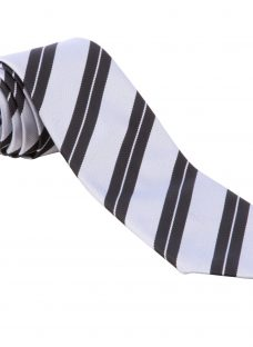 Nottingham High School Sixth Form Tie