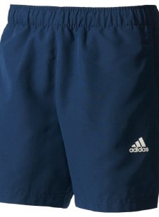 Adidas Chelsea Training Shorts