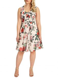Studio 8 Amily Floral Print Dress