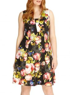 Studio 8 Amara Fit And Flare Floral Dress