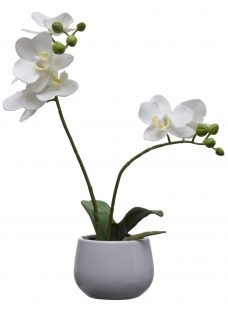 House by John Lewis Artificial Orchid