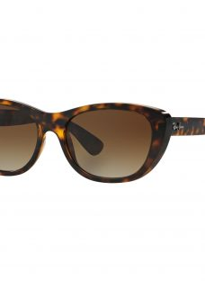 Ray-Ban RB4227 Square Framed Sunglasses