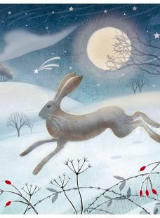 Almanac Leaping Hare Charity Christmas Cards