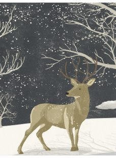 Almanac Winter Stag Charity Christmas Cards