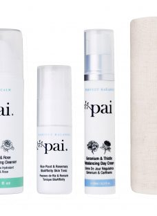 Pai Anywhere Essentials Perfect Balance Travel Collection