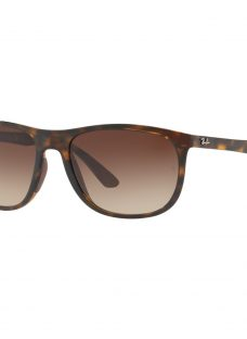 Ray-Ban RB4291 Square Sunglasses