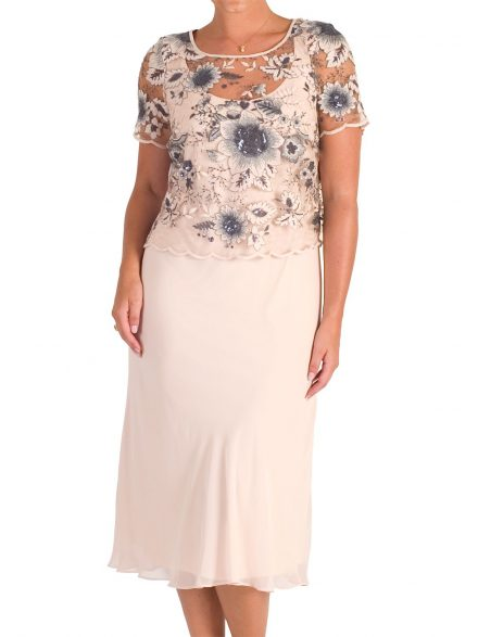 Chesca Sequin And Embroidered Mesh Dress